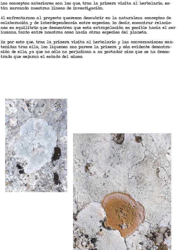 15 de Septiembre_morenograu-3 copia